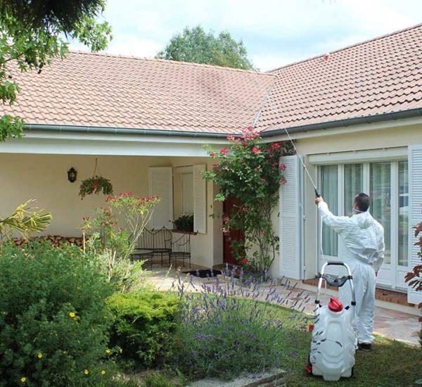 Nettoyage toiture pulvérisateur Pro Sprayer